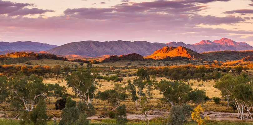 matthew duke header landscape photo of outback Australia