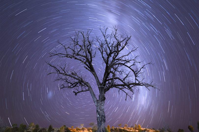 Lone Tree Vortex Matthew Duke Landscape Photography Astrophotopgraphy