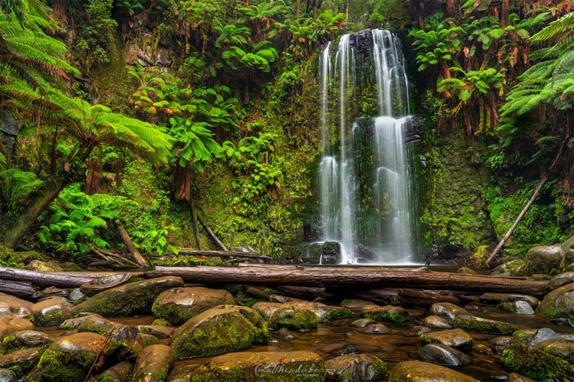 Beauchamp-Falls-Otway-Forest-Victoria-Duke-Landscape-Photography